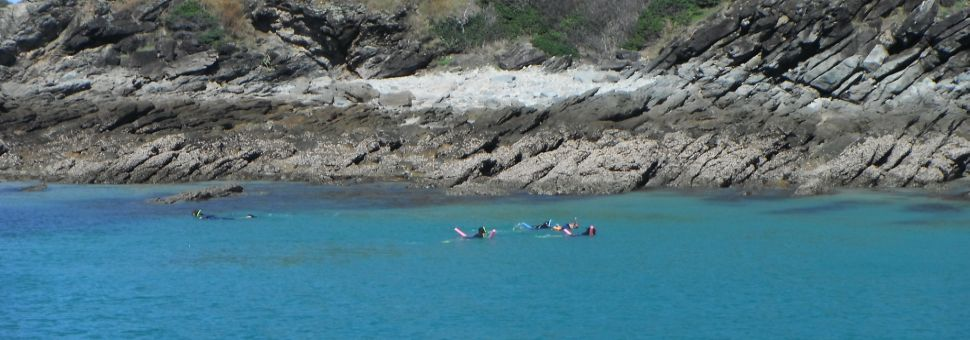 Snorkelling around Great Keppel Island