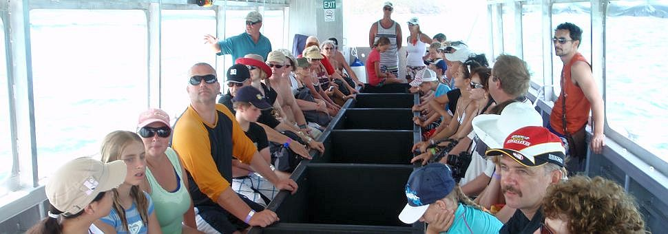 Passengers on the glass bottom boat